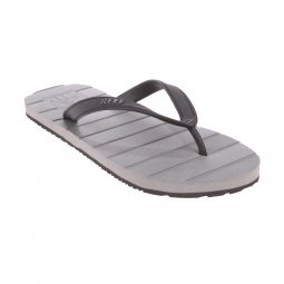 Tongs Reef Switchfoot grises