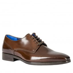Derbies Azzaro Poivre en cuir marron