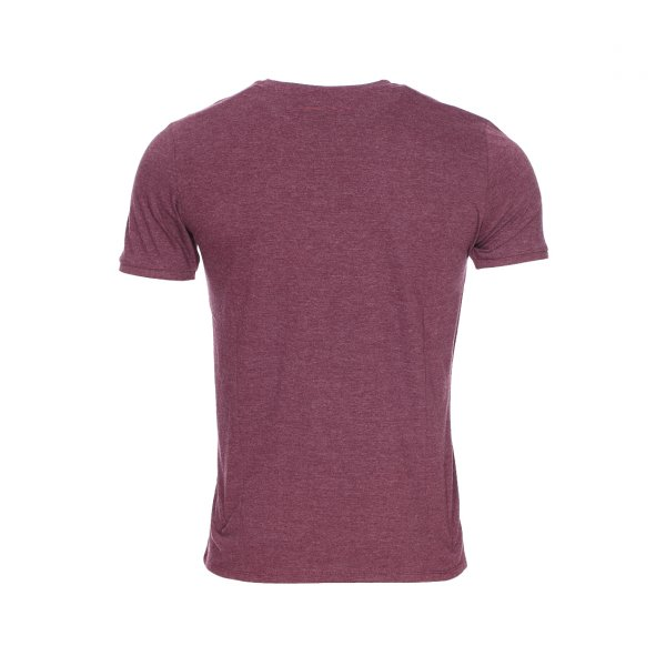 Tee-shirt Tiliot Teddy Smith en coton bordeaux floqué