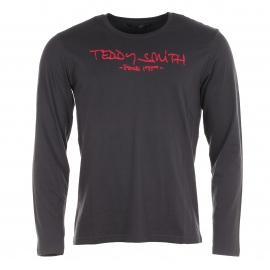 Tee-shirt homme Teddy Smith